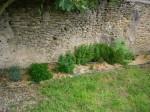 Jardin LPB Juillet 2012 (3).JPG