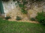 Jardin LPB Juillet 2012 (5).JPG